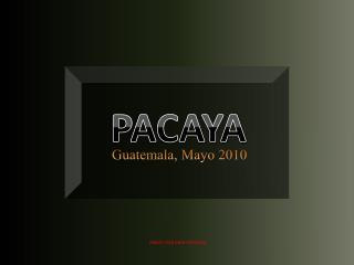 PACAYA