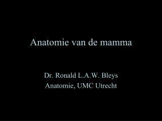Anatomie van de mamma