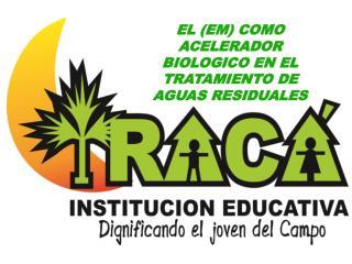 EL (EM) COMO ACELERADOR BIOLOGICO EN EL TRATAMIENTO DE AGUAS RESIDUALES