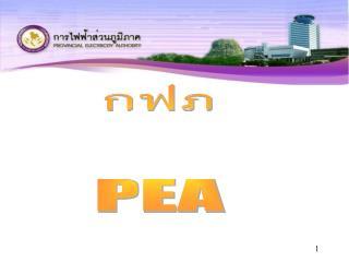 กฟภ PEA