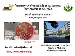 Melioidosis Research Center (MRC),  Faculty of Medicine, Khon Kaen University