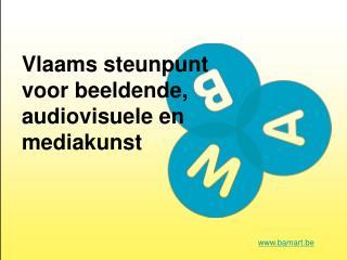 Vlaams steunpunt voor beeldende, audiovisuele en mediakunst