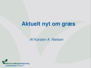Aktuelt nyt om græs