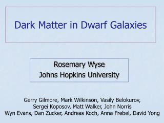 Dark Matter in Dwarf Galaxies