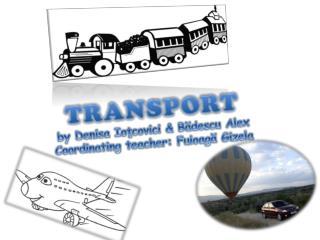 TRANSPORT by Denisa Ioţcovici & Bădescu Alex Coordinating teacher: Fuioagă Gizela