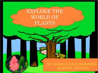 EXPLORE THE WORLD OF PLANTS