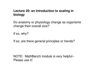 Lecture 20: an introduction to scaling in biology
