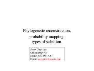 Phylogenetic reconstruction, probability mapping, types of selection.