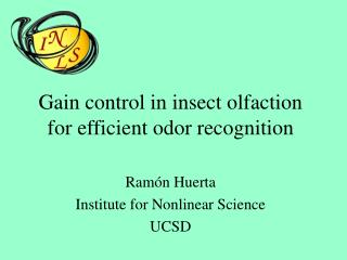 Gain control in insect olfaction for efficient odor recognition