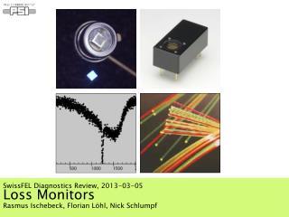 Loss Monitors