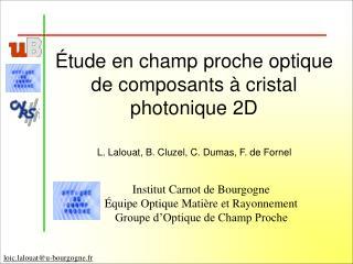 �tude en champ proche optique de composants � cristal photonique 2D