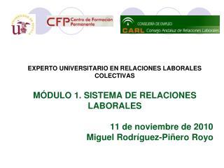 EXPERTO UNIVERSITARIO EN RELACIONES LABORALES COLECTIVAS MÓDULO 1. SISTEMA DE RELACIONES LABORALES