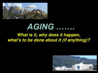 AGING   .