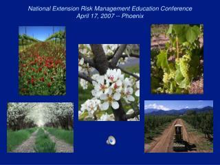 National Extension Risk Management Education Conference April 17, 2007 -- Phoenix