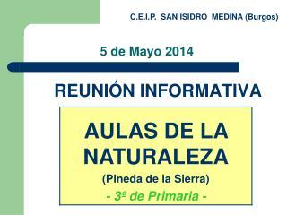 5 de Mayo 2014