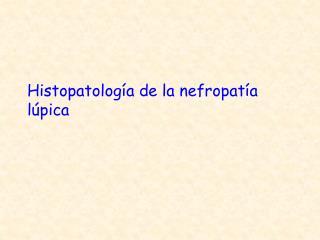 Histopatolog�a de la nefropat�a l�pica