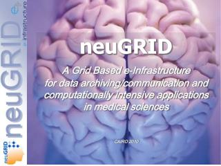 neuGRID A  Grid Based e-Infrastructure