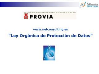 """netconsulting.es """"Ley Orgánica de Protección de Datos"""""""
