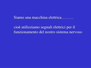 Siamo una macchina elettrica……… cioè utilizziamo segnali elettrici per il