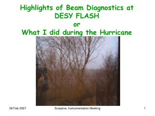 Highlights of Beam Diagnostics at  DESY FLASH or What I did during the Hurricane
