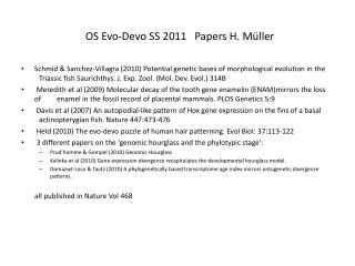 OS Evo-Devo SS 2011   Papers H. Müller