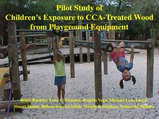 Pilot Study of  Children's Exposure to CCA-Treated Wood from Playground Equipment