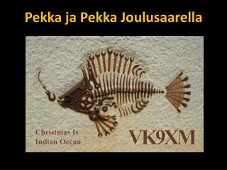 Pekka ja Pekka Joulusaarella