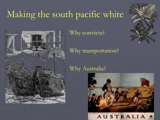 Making the south pacific white