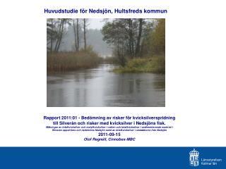 Huvudstudie för Nedsjön, Hultsfreds kommun