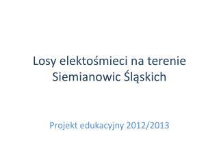 Losy  elektośmieci  na terenie Siemianowic Śląskich