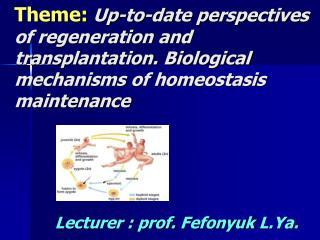 Lecturer : prof.  Fefonyuk L.Ya .