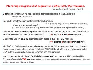 Klonering van grote DNA segmenten : BAC, PAC, YAC vectoren. cfr. o.a. Primrose & Twyman : hfdst. 5