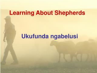 Learning About Shepherds