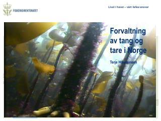 Forvaltning av tang og tare i Norge Terje Halsteinsen