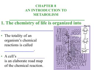 1. The chemistry of life is organized into  _______________________