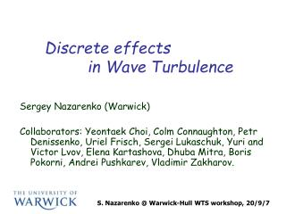 Discrete effects           in Wave Turbulence