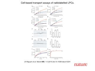 LN Nguyen  et al. Nature  000 , 1-4 (2014) doi:10.1038/nature13241