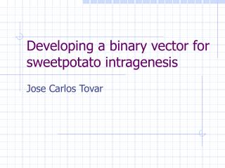 Developing a binary vector for sweetpotato intragenesis