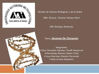 División de Ciencias Biológicas y de la Salud DRA: Álvarez  Cisneros Yenisey Merit
