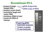 Prepare foreign target DNA prepare vector host recombine target and vector DNA introduce rDNA to host screen for DNA of