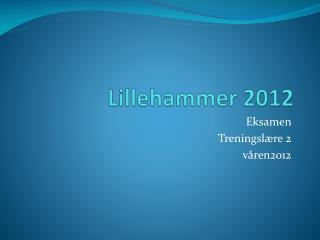 Lillehammer 2012