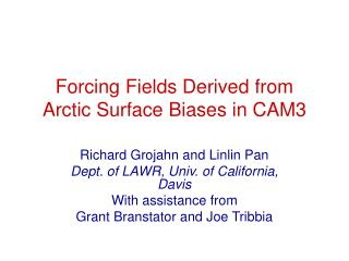 Forcing Fields Derived from Arctic Surface Biases in CAM3