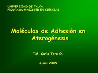 UNIVERSIDAD DE TALCA PROGRAMA MAGÍSTER EN CIENCIAS