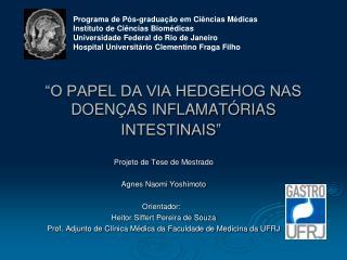"""""""O PAPEL DA VIA HEDGEHOG NAS DOENÇAS INFLAMATÓRIAS INTESTINAIS"""""""