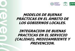 MODELOS DE BUENAS PR�CTICAS EN EL �MBITO DE LOS GOBIERNOS LOCALES.