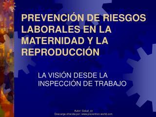 PREVENCIÓN DE RIESGOS LABORALES EN LA MATERNIDAD Y LA REPRODUCCIÓN