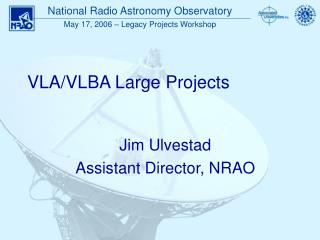 VLA/VLBA Large Projects