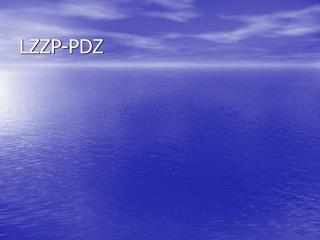 LZZP-PDZ