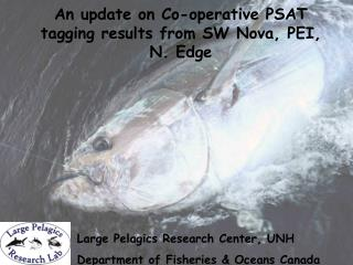 An update on Co-operative PSAT tagging results from SW Nova, PEI,   N. Edge