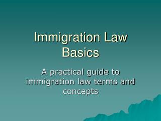 Immigration Law Basics